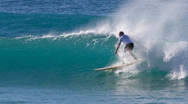 There are surfing waves everywhere in coastal Sydney