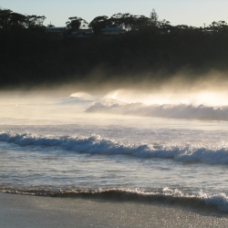 Early morning fog at beach_5446